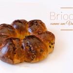 Brioche (de type vendéenne) aux pépites de chocolat - © Crookies