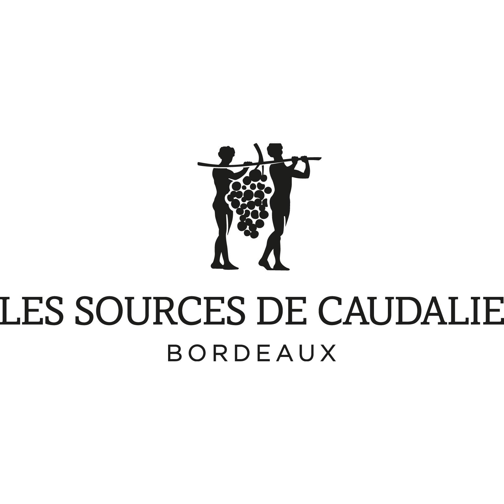 """Résultat de recherche d'images pour """"logo sources de caudalie"""""""