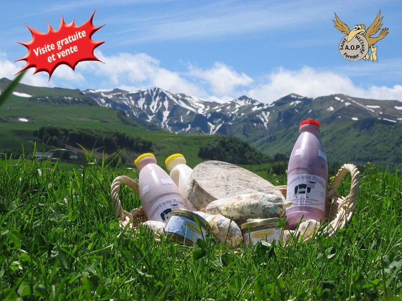 Produits laitiers et fromage st nectaire confectionnés et vendus par la ferme Gaec de l'oiseau